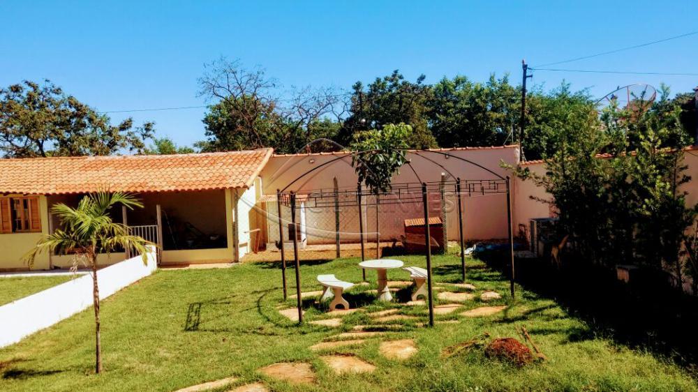 Comprar Chácaras / Chácara em Luís Antônio apenas R$ 1.300.000,00 - Foto 6
