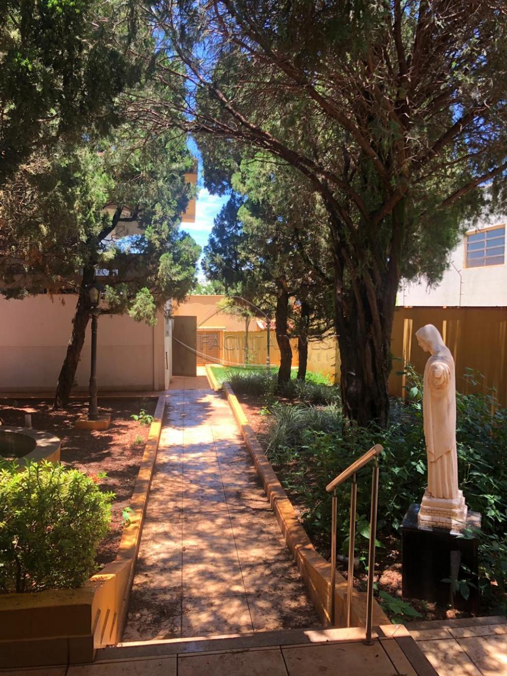 Comprar Casa Padrão / Casa Padrão em Sertãozinho apenas R$ 1.500.000,00 - Foto 9
