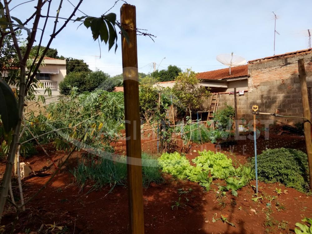 Comprar Terrenos / Terrenos em Jardinópolis apenas R$ 150.000,00 - Foto 6