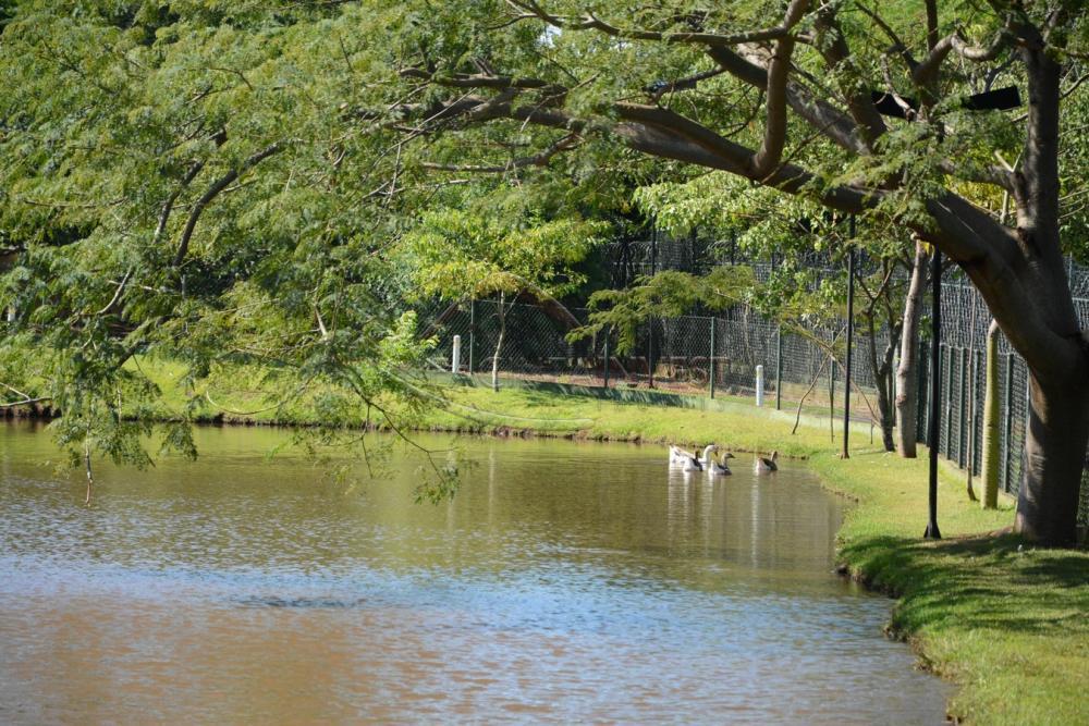 Comprar Casa Condomínio / Casa Condomínio em Ribeirão Preto apenas R$ 1.800.000,00 - Foto 12