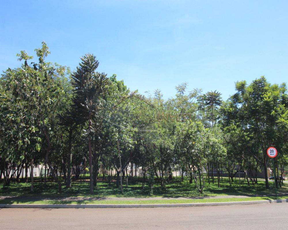 Comprar Casa Condomínio / Casa Condomínio em Ribeirão Preto apenas R$ 920.000,00 - Foto 36